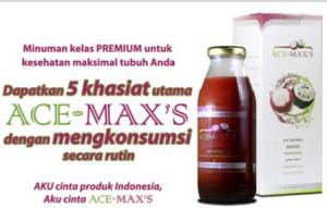 ace-maxs3